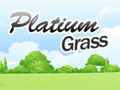 Platium Grass